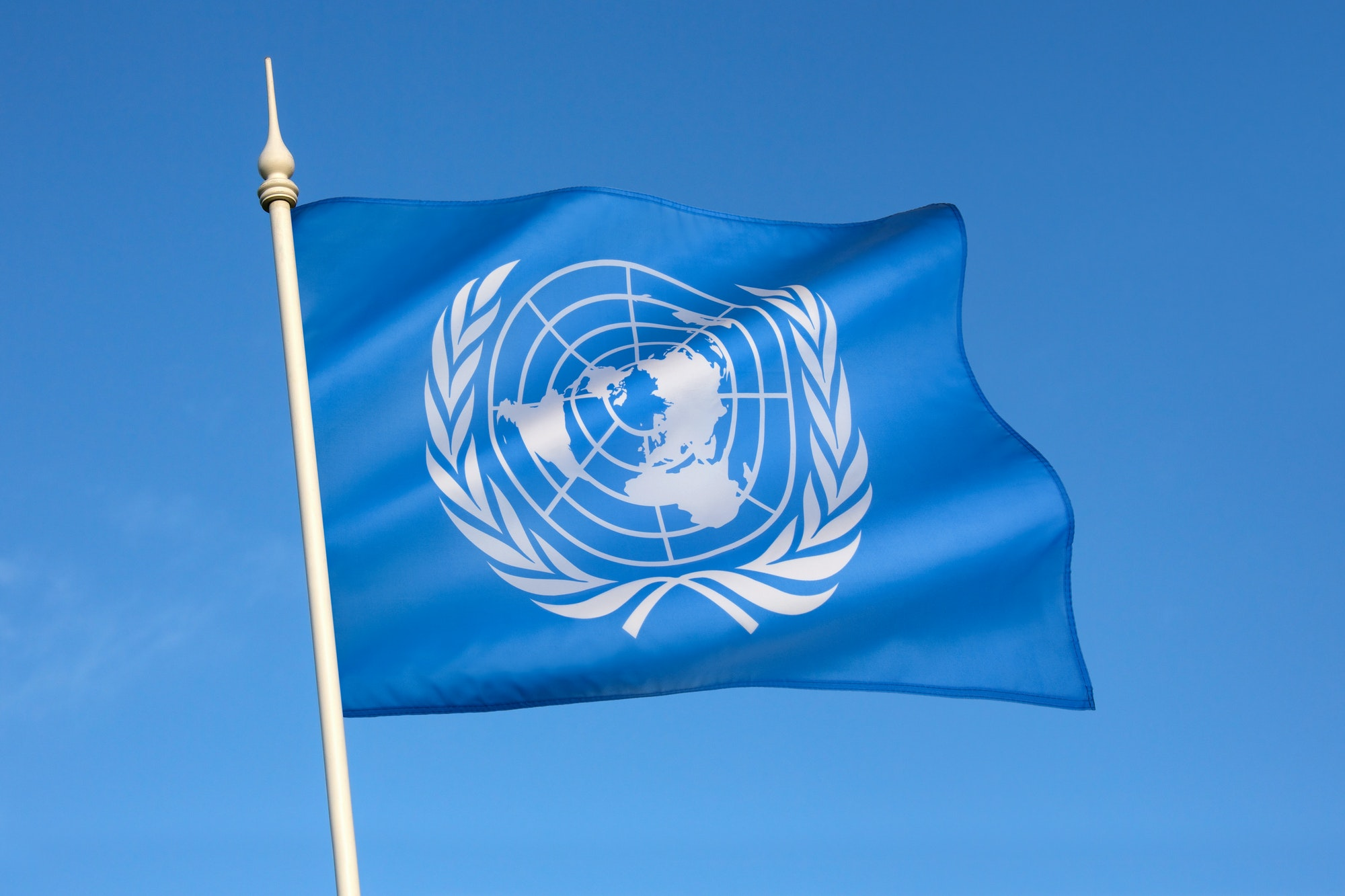 The flag of the United Nations was adopted on December 7